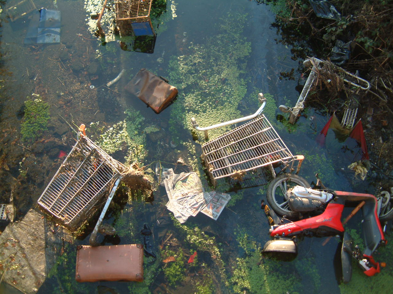 waterway cleaning